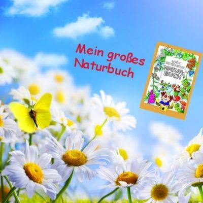 Kinderbuch über die Natur