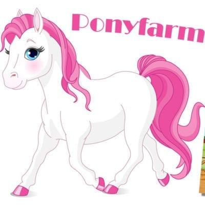 Kinderbuch Ponyfarm