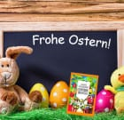 Mein großes Osterbuch